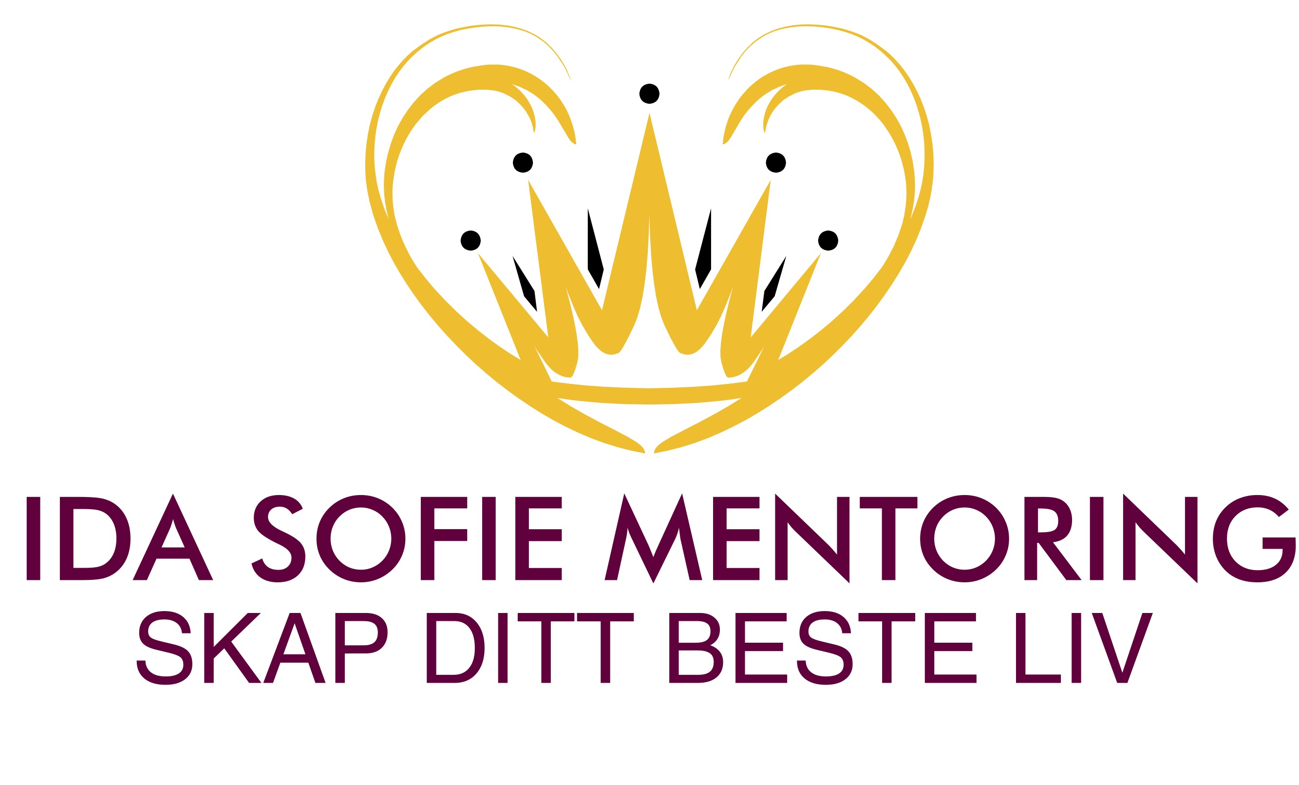 IDA SOFIE mentoring