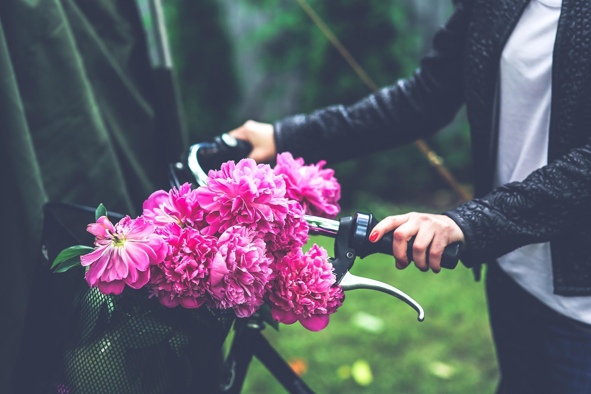 bike-791580_1920